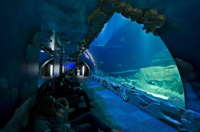 Aquarium de Paris CineAqua em Paris