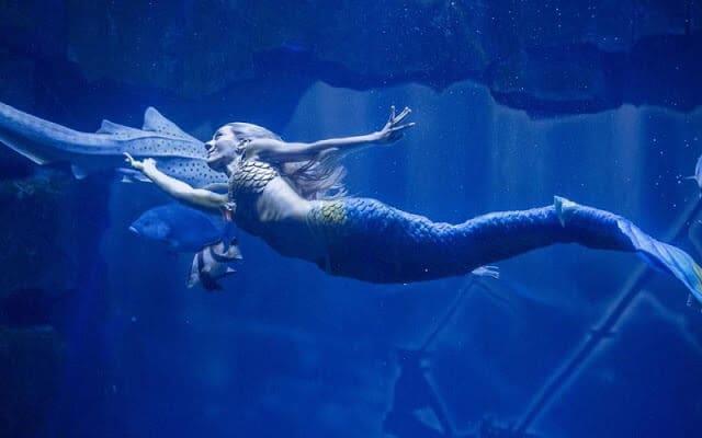A sereia Claire do Aquarium Cinéaqua de Paris