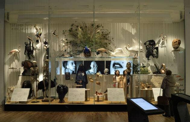 Acervo do Museu do Homem em Paris
