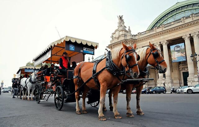 Carruagem em Paris